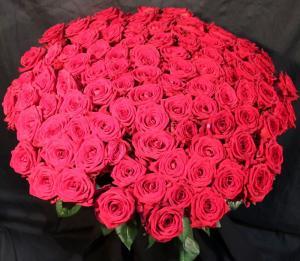 Купить розы 101штуку Владивосток
