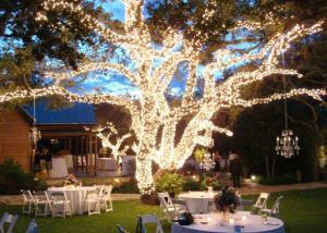 Оформление свадеб деревянное