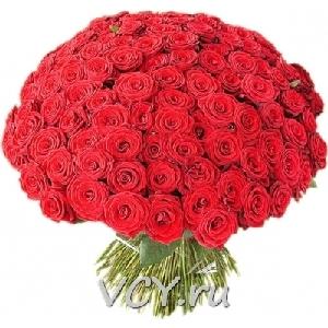 101 роза кольцо